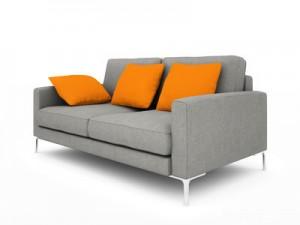 exemple d'un canapé gris